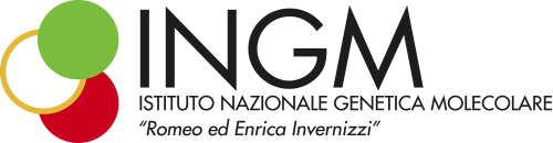 Scientific Director - INGM